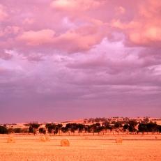 Dookie, Australia