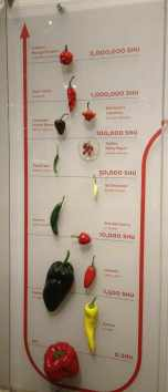 Examples of peppers and their SHU level