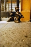 'Life underground' bronze sculptures by Tom Otterness. A comment on capitalism and the little people.