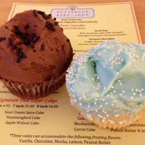 Buttercup Bakery chocolate frosting on chocolate, blue frosting on vanilla.