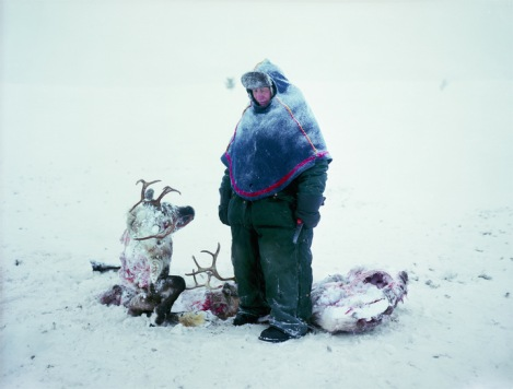 A Sami in Sweden mourns the loss of two reindeer that starved after locking horns in a fight for dominance. By Erika Larsen.
