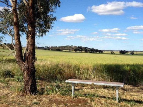 There are seats regularly placed along the rail trail if you need a rest, or just want to stop and listen to the birds and smell the gumtrees.