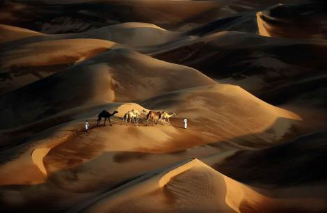 Tribesmen lead their camels through the sand dunes of the Liwa desert in the United Arab Emirates. (By Karim Sahib/AFP/Getty)