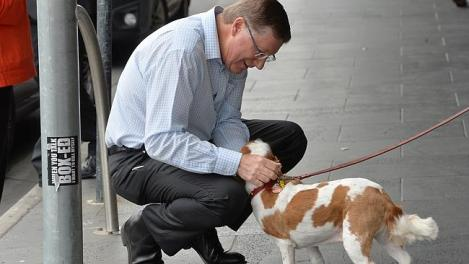 Napthine on the campaign trail at Windsor this morning. (Photo: Rob Leeson/Herald Sun)