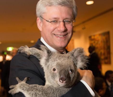 Canadian President Harper (Andrew Taylor/G20 Australia)