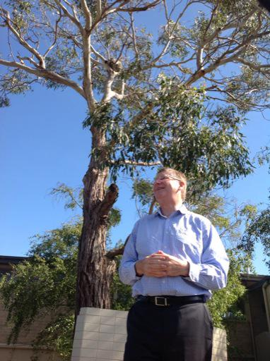 Vic Premier in front of former Portland, and a tree his son planted more than a decade ago. (Via Dan Conifer Twitter) (2nd Tweet: 'Also, can you spot the mother and baby koala?')