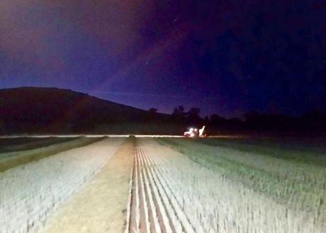 Paddock traffic, tractor lights; Major Plains, Victoria, 22 November 2015