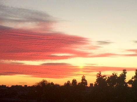 Pink pink pink. Melbourne sunset, view from Hawthorn, 17 November 2015