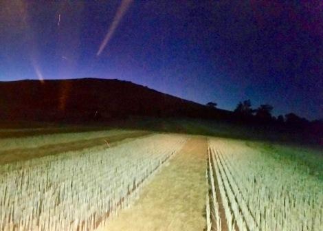 Major Plains, Victoria, 22 November 2015