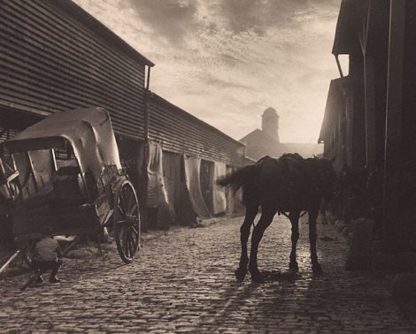 Paddy's Market, Sydney (1906). By Harold Cazneaux.