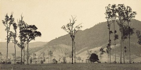 Cambewarra Mountain, New South Wales (c1935). By Harold Cazneaux.